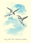 Celia Biscoe: One Good Tern