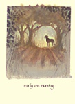 Fran Evans: Early One Morning