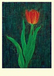 Yuko Hirose: Red Tulip