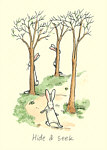 Anita Jeram: Hide and Seek