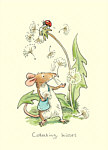Anita Jeram: Collecting Kisses