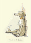 Anita Jeram: Peace and Quiet