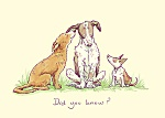 Anita Jeram: Did You Know