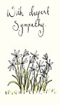Holly Surplice: Deepest Sympathy