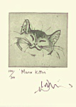 Julian Williams: Manx Kitten