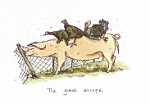 Anita Jeram: The Great Escape